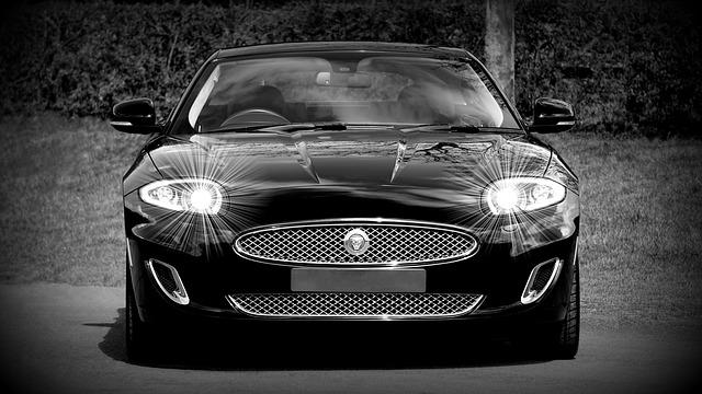 černý jaguar.jpg